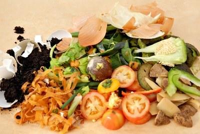 dechets legumes