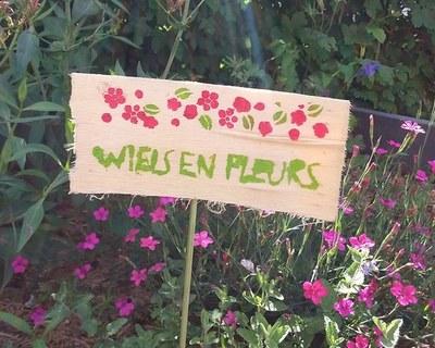 wiels en fleurs photo recadré
