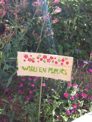 wiels en fleurs photo